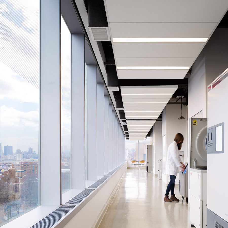 Making Adjustments - A Decade of Science at City University of New York | Flad Architects
