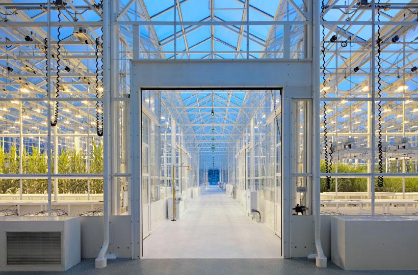 Syngenta's Advanced Crop Lab - Strategic and Site Master Plan