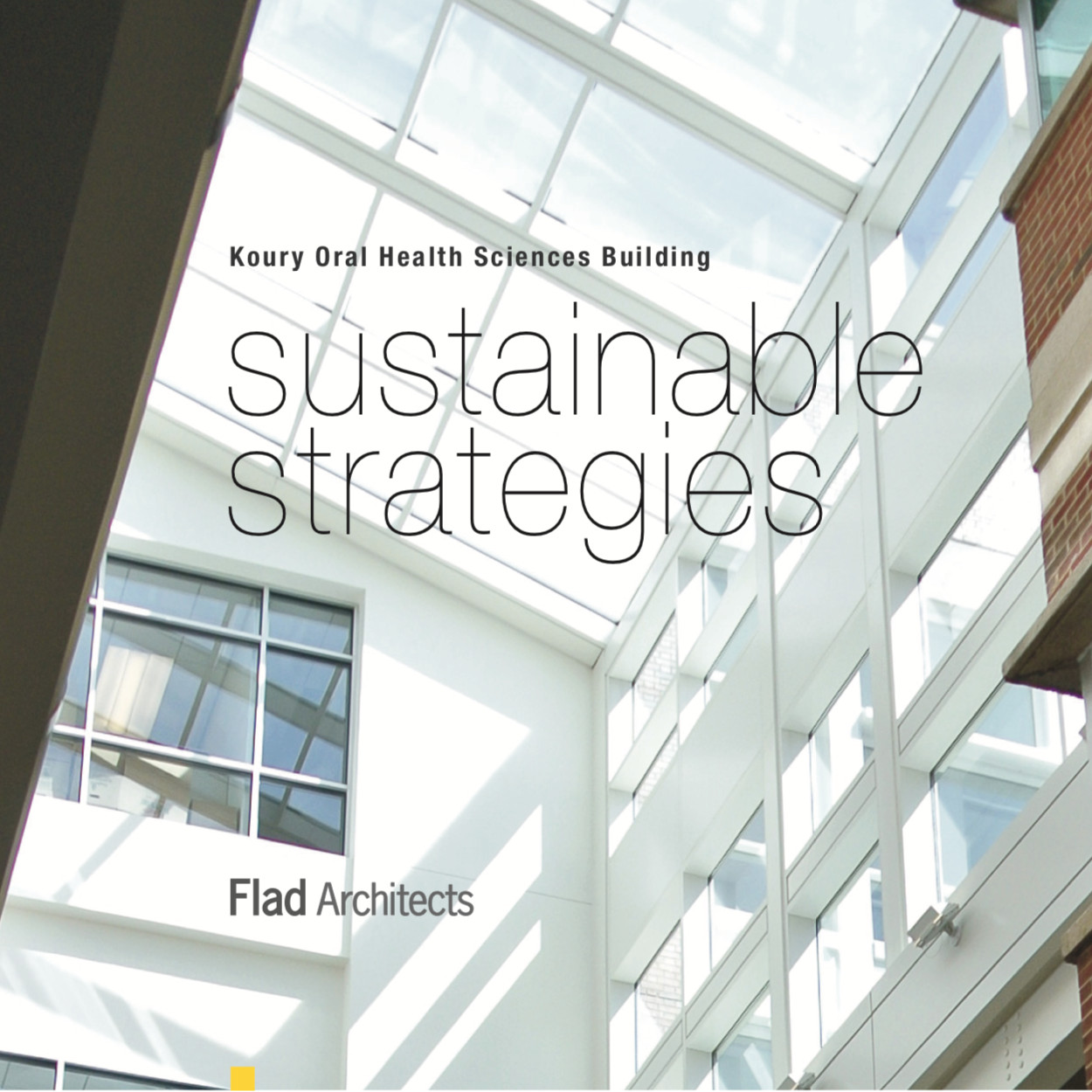 Flad Architects Story