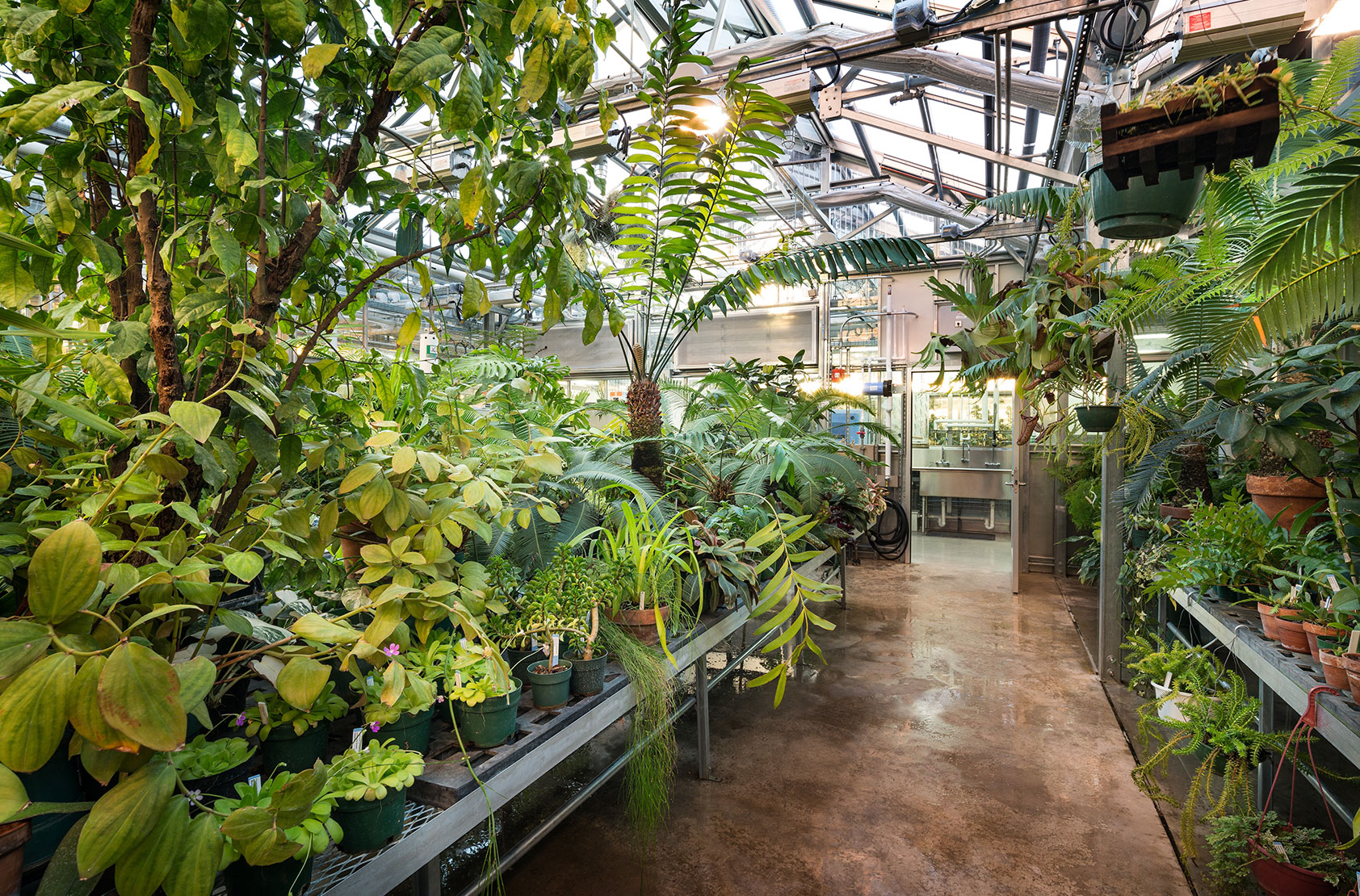 University of Wisconsin - Milwaukee - Research and Instructional Greenhouse